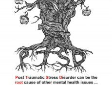 Along with her team, sixteen-year-old Rebekah Porter from Newtownards, County Down has produced a poster to show people with mental health issues such as post traumatic stress disorder (PTSD) that there is help available.