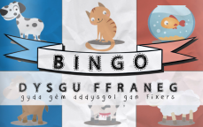 Twenty-two-year-old Nerys Law from Powys in Mid-Wales began work on a Welsh-to-French bingo game after noticing a lack of language teaching aids for pupils who don't speak English as their mother tongue.