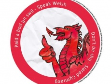 Ted Simonds, 17, and his team from North Wales want young people to feel comfortable speaking Welsh in social situations. 