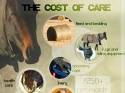 Know The Costs Poster